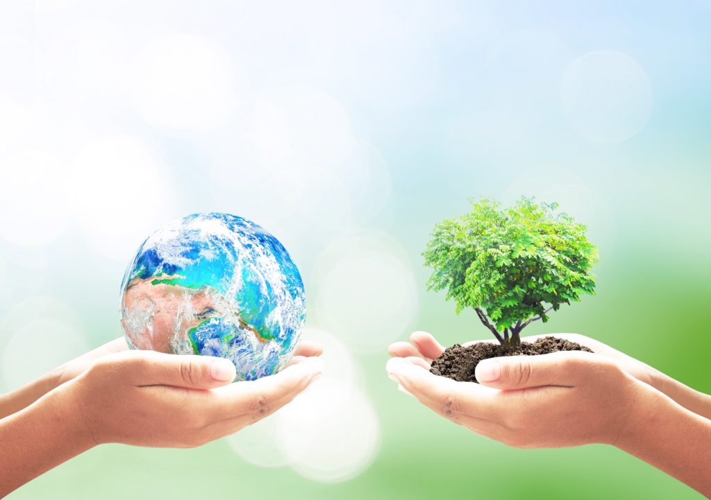 Happy 50th Anniversary Earth Day from Pavement Technology!  Photo Courtesy of Shutterstock
